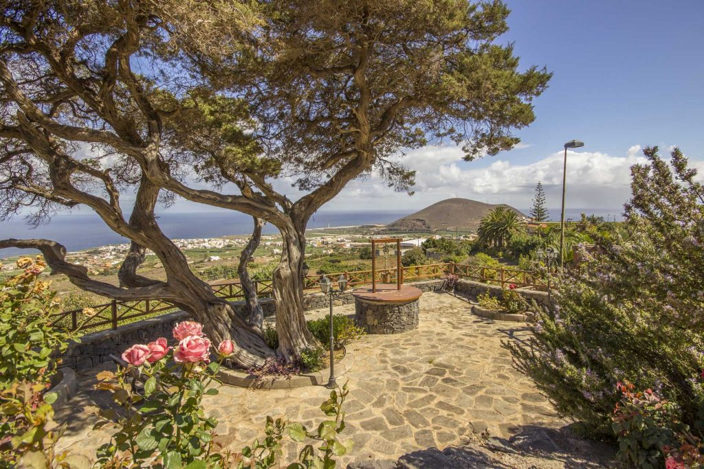 winery-finca-sale-tenerife-canary-islands-buenavista-8